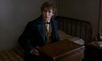 Les Animaux Fantastiques, le spinoff d'Harry Potter dévoile son teaser VOSTFR/VF et une affiche : Les premières images de la préquelle de JK Rowling