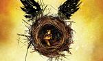 Harry Potter 8 sort en librairies aujourd'hui : La suite d'Harry Potter enfin traduite en français