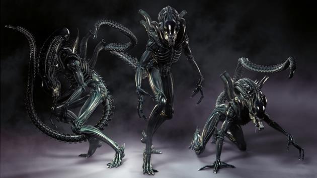 Vidéo : 10 faits à connaître sur l'Alien Xénomorphe : Une très bonne explication sur ce prédateur humain