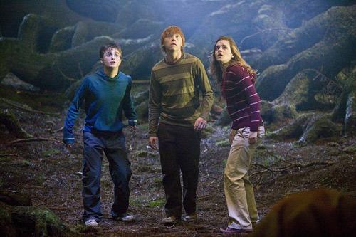 Harry Potter et l'Ordre du Phénix : Le Trio