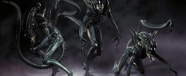 Vidéo : 10 faits à connaître sur l'Alien Xénomorphe