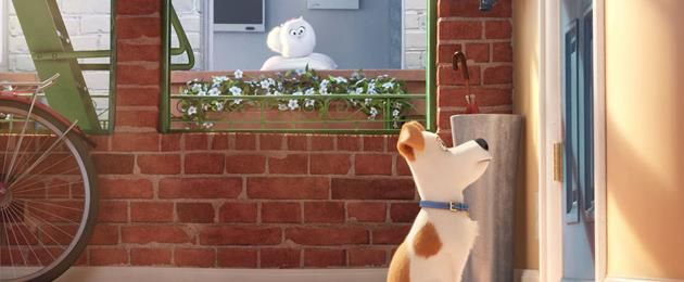 Critique du Film d'animation : Comme des Bêtes