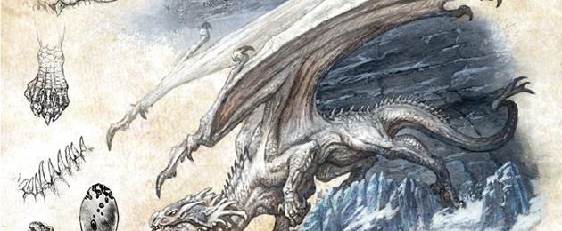 Critique du Jeu de rôle : Dragons