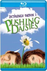 Pushing Daisies saison 1 - BD