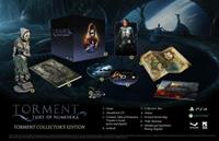 Torment: Tides of Numenera - Edition Collector -  PC