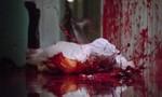 Dexter 1x10 ● Chambre 103