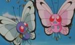 Pokémon 1x21 ● Un Pokémon amoureux