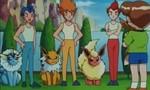 Pokémon 1x40 ● La montagne de l'évolution