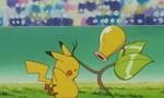 Pokémon 1x79 ● 4e tour décisif