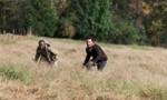 The Walking Dead 6x15 ● Est