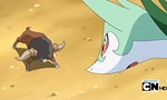 Pokémon 15x09 ● Goodbye, Junior Cup - Hello Adventure!