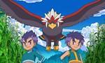 Pokémon 15x15 ● A Surface To Air Tag Battle Team!