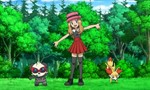 Pokémon 16x49 ● Pathways to Performance Partnering!