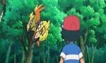 Pokémon 18x02 ● Le défi du Gardien !