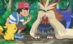 Pokémon 18x32 ● Chasse au trésor à Akala !