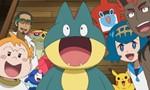 Pokémon 18x48 ● Les mille et une poses !