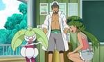 Pokémon 18x82 ● Une évolution dansante !