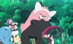 Pokémon 18x96 ● Le Nounourson des légendes !