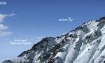 Minuscule : La Vie privée des insectes 2x59 ● Mouche à neige
