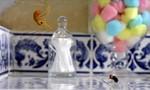 Minuscule : La Vie privée des insectes 2x79 ● Brushing