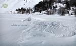 Minuscule : La Vie privée des insectes 2x90 ● Blanc comme neige