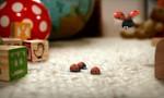 Minuscule : La Vie privée des insectes 2x95 ● Cocciland