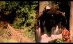 Beastmaster 1x08 ● La dernière licorne