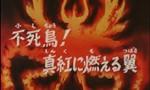 Les Chevaliers du Zodiaque 2x13 ● Phénix ! Tes ailes brûlent et virent à l'écarlate