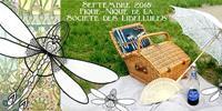 Pique-nique steampunk de la société des libellules