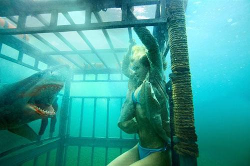 Sara Paxton en cage