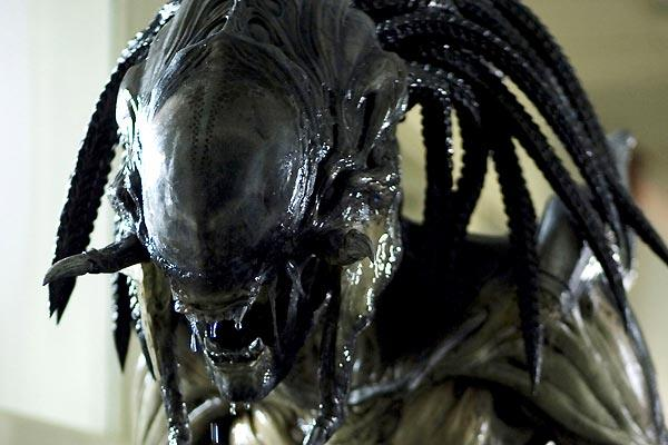 Aliens vs. Predator - 01