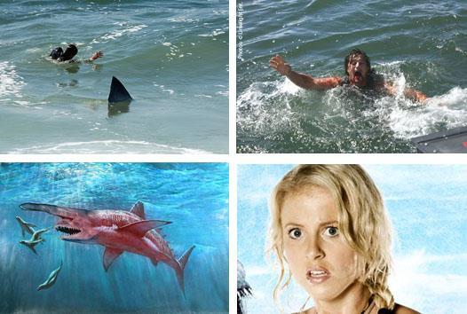 Malibu Shark Attack 01