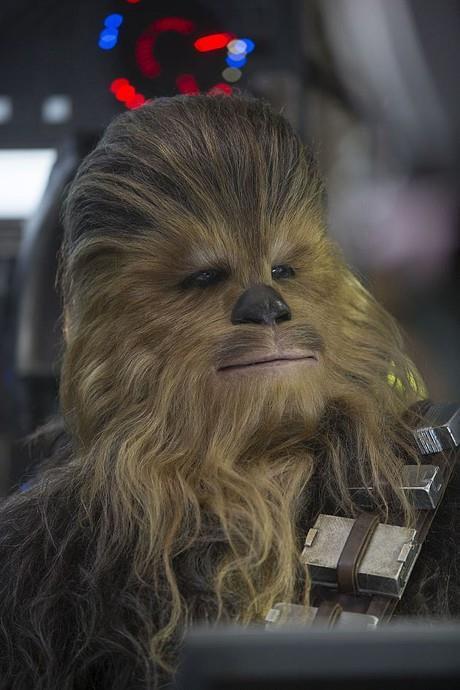 Chewie n'a pas pris un poil