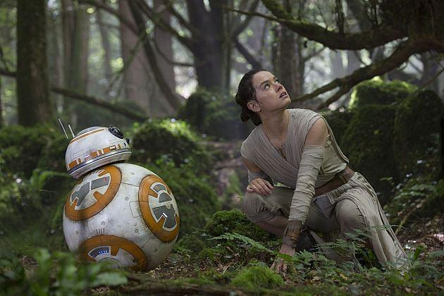 Rey et BB-8 en pleine forêt