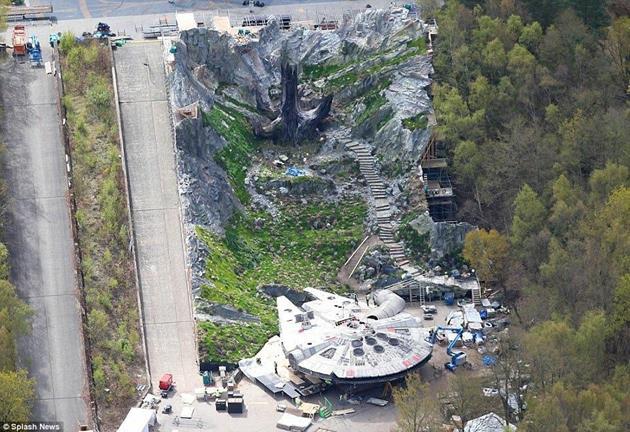 L'étrange arbre de Skellig Michael sur le plateau de Pinewood