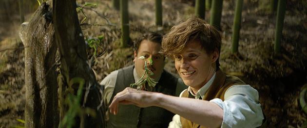 Norbet et Jacob dans la valise magique