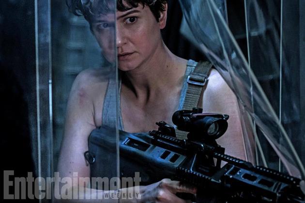 Katherine Waterston arme à la main