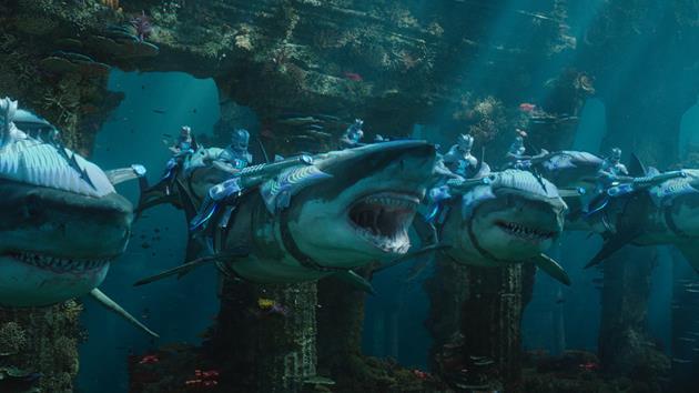 Requins apprivoisés