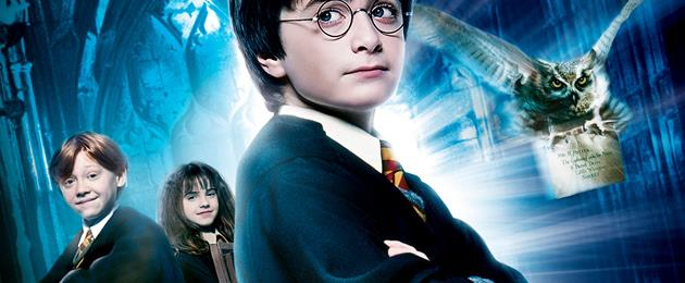 Critique du Film : Harry Potter à l'école des sorciers : Harry Potter à l'Ecole des Sorciers - édition simple