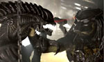 Voir la critique de Aliens vs. Predator Requiem : AvsPR : Un Crash sur la toile ?