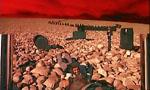 Voir la critique de Phantasm II : Loin du phantasme cinématographique ?
