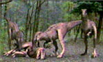 Voir la critique de Raptor Island : Bienvenu à Bouse Island