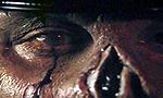 Voir la critique de Maniac Cop 2 : Une suite supérieure à l'original