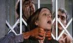 Voir la critique de Le Massacre des morts-vivants : Jorge Grau, entre Romero et Fulci