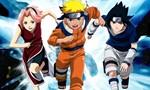 Voir la fiche Naruto [2006]
