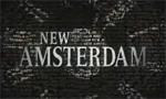 Voir la fiche New Amsterdam [2007]