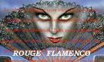 Voir la critique de Rouge Flamenco : Olé!!
