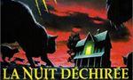 Voir la critique de La Nuit Déchirée : A prendre au second degré!