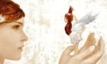 Voir la fiche Le Dico féerique : Le règne humanoïde [#1 - 2010]