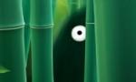 Voir la fiche Hayao Miyazaki [2010]